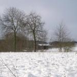 Paardenstal in de sneeuw
